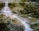"""The terraces at ""Mammoth Hot Springs"" are created by heat. water. limestone and rock. Minerva is po"