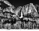 """Ansel Adams contributed so much to the Promotion and interest in black & white photography through"