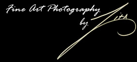 fine art photography by Zita Johnson - Award winning nature and landscape photographs in both giclee and crystal archive - Zita Johnson Fine Art Photography